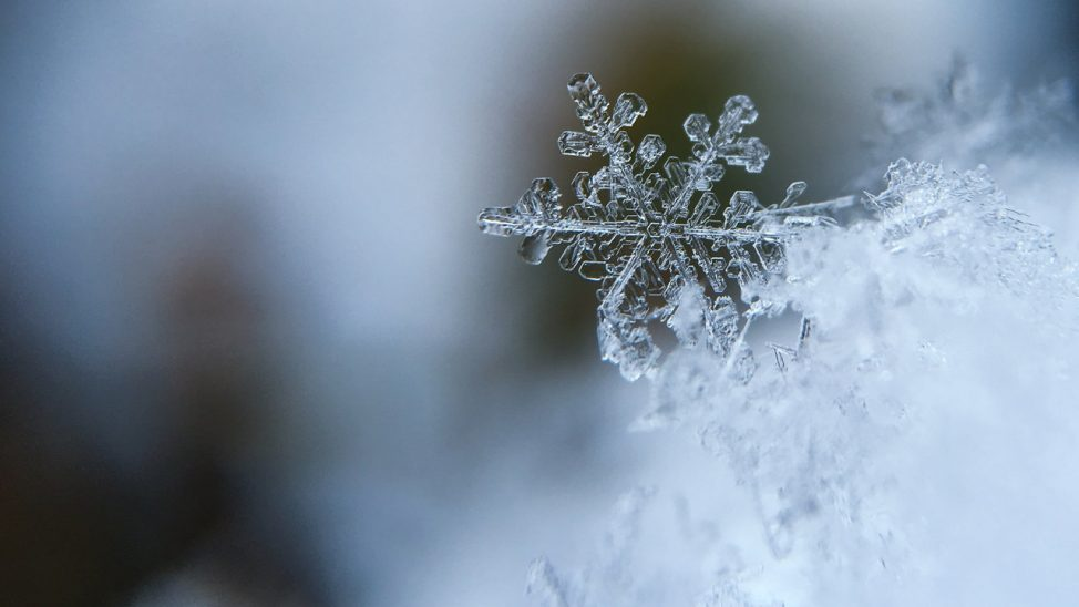 2019 winter snowflake 1245748